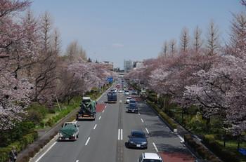 Kunitachi03