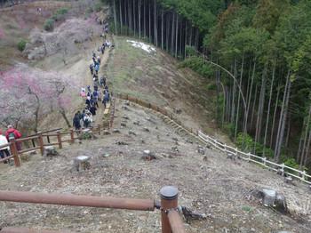 Yoshino06